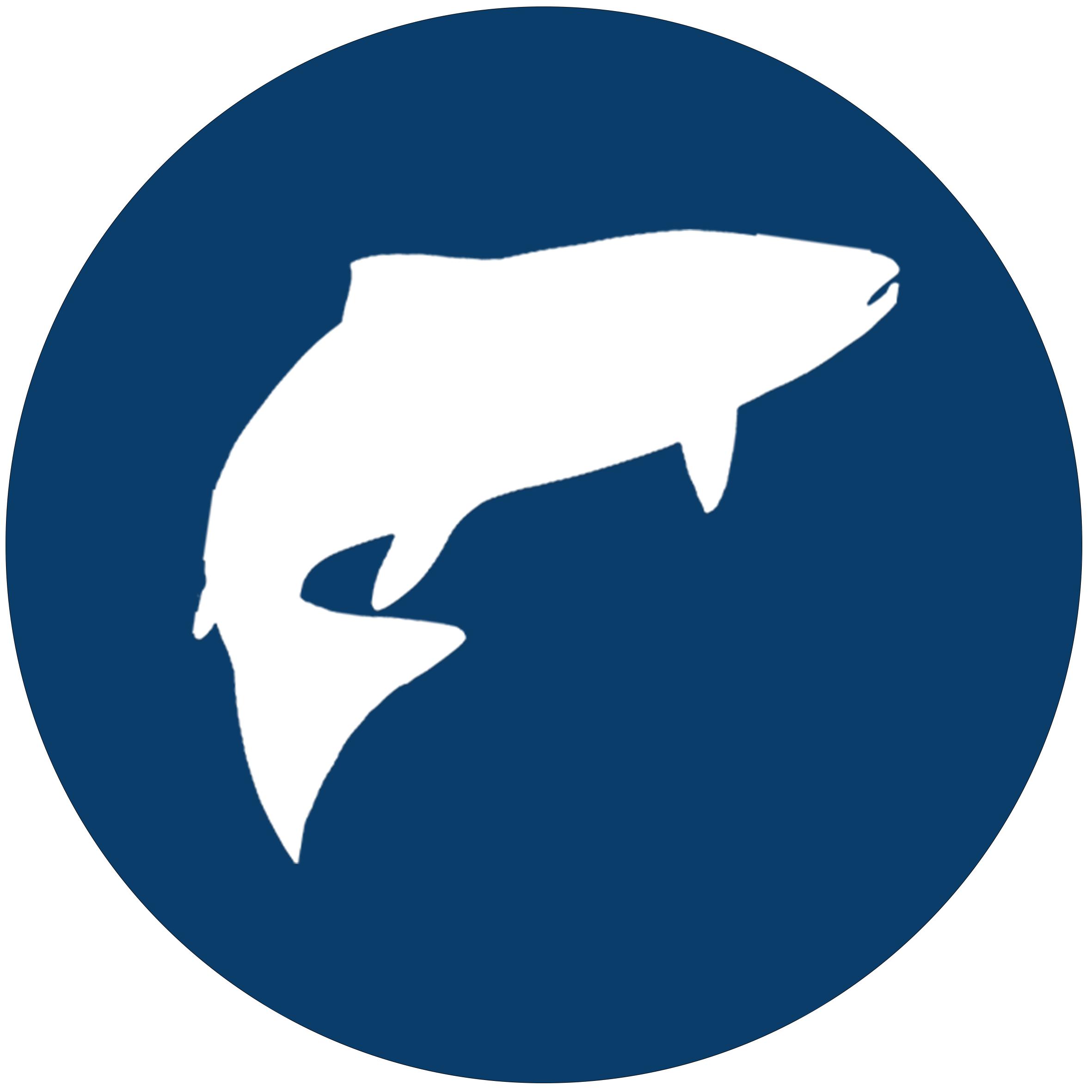 Fish-Vector-Icon