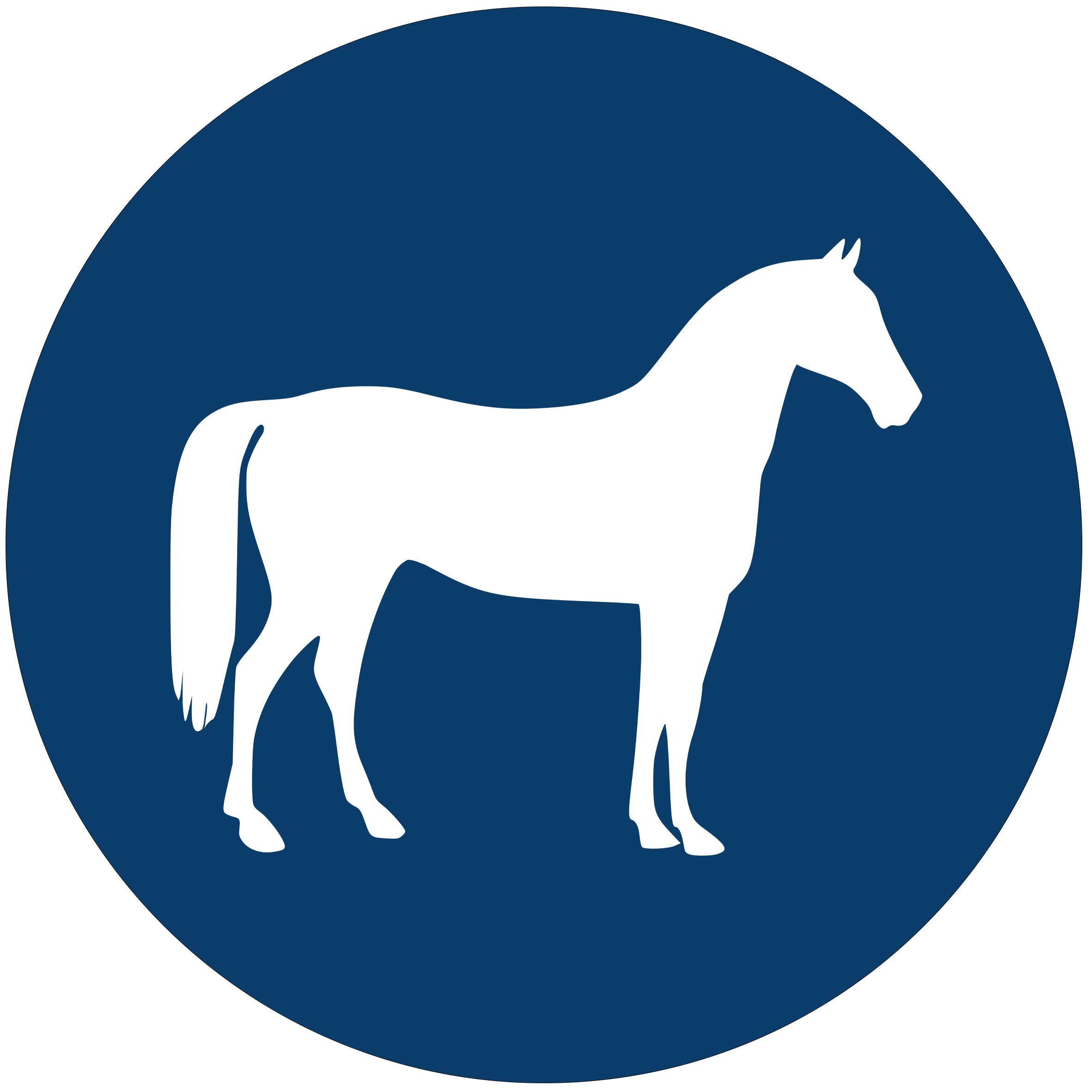 Horse-Vector-Icon